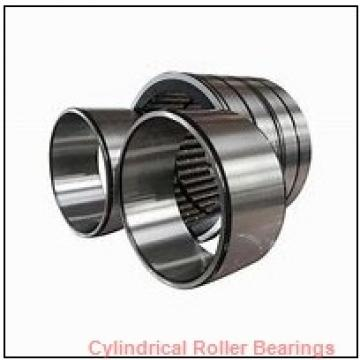 1.25 Inch | 31.75 Millimeter x 1.75 Inch | 44.45 Millimeter x 4 Inch | 101.6 Millimeter  CONSOLIDATED BEARING 94764  Cylindrical Roller Bearings