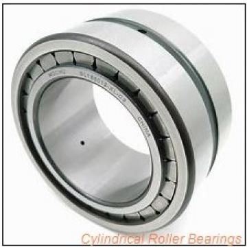 0.5 Inch | 12.7 Millimeter x 1 Inch | 25.4 Millimeter x 2 Inch | 50.8 Millimeter  CONSOLIDATED BEARING 94132  Cylindrical Roller Bearings